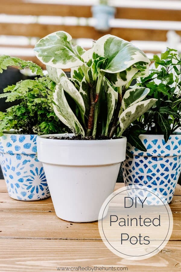 DIY painted terracotta pots with plants