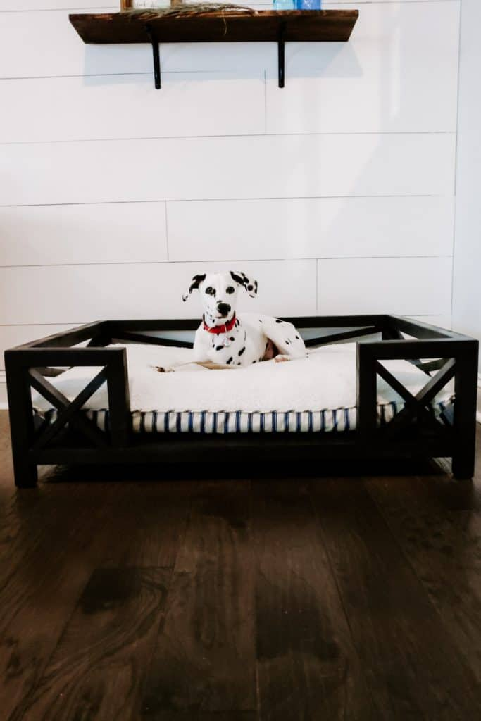 dalmatian puppy sitting in modern farmhouse DIY dog bed