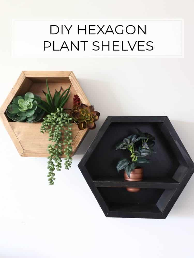 DIY Hexagon Plant Shelves – 2 Ways!