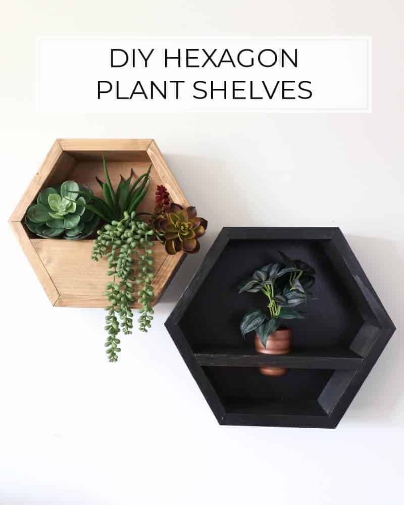 DIY hexagon plant shelves with black stain